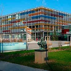 Университетская клиника Гейдельберг