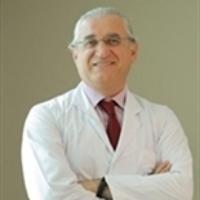 محمود غولغيستيرين